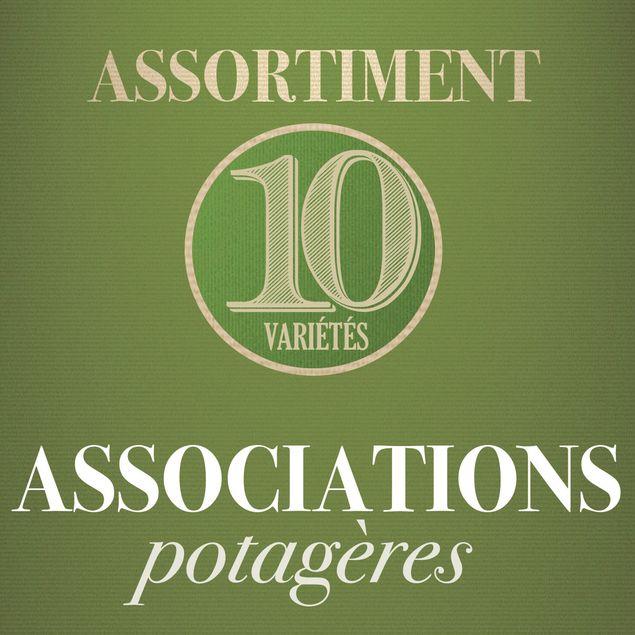 ASSORTIMENT ASSOCIATIONS POTAGERES