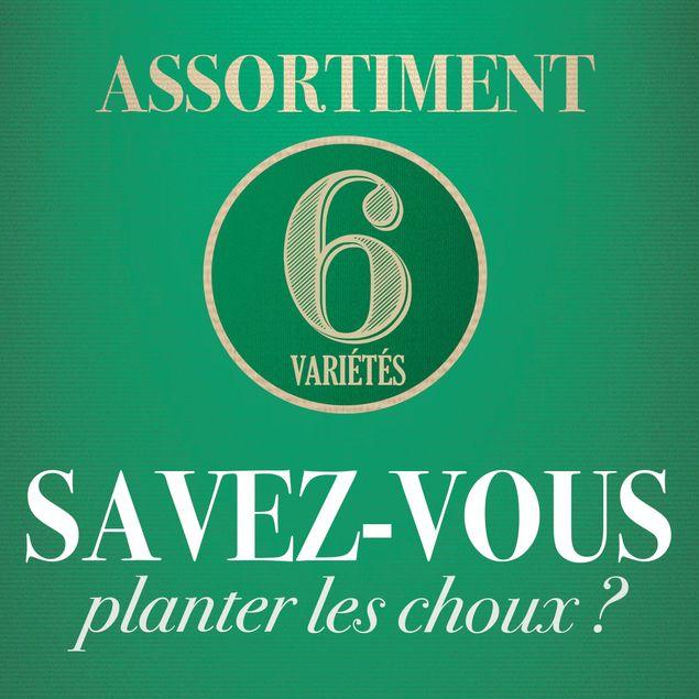 ASSORTIMENT SAVEZ-VOUS PLANTER LES CHOUX